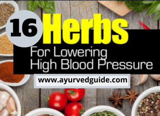 Miracle Herb For Blood Pressure - 16 herbs that lower blood pressure quickly
